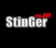 Вставка вместо катализатора StinGer